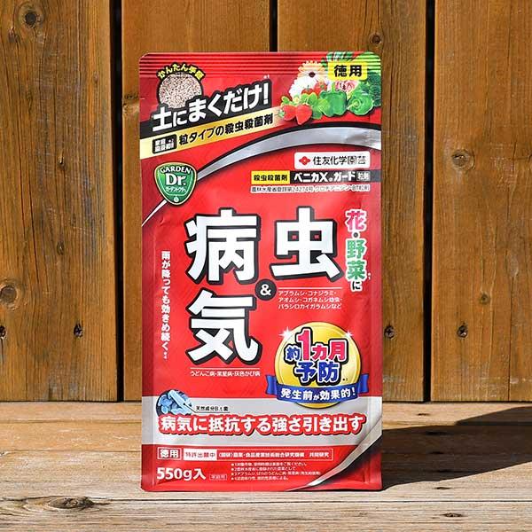 小 粒タイプ ベニカXガード 返品不可 粒剤 2個まで ZIK-10000 [正規販売店] ※土セットと同梱可※ 550g入