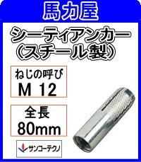 サンコーテクノ シーティアンカーCT-1280 【30本入】ミリねじ (スチール製)