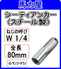 サンコーテクノ シーティアンカーCT-4080 【30本入】インチねじ (スチール製)