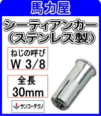 サンコーテクノ シーティアンカーSGT-3030 【100本入】(ステンレス製)