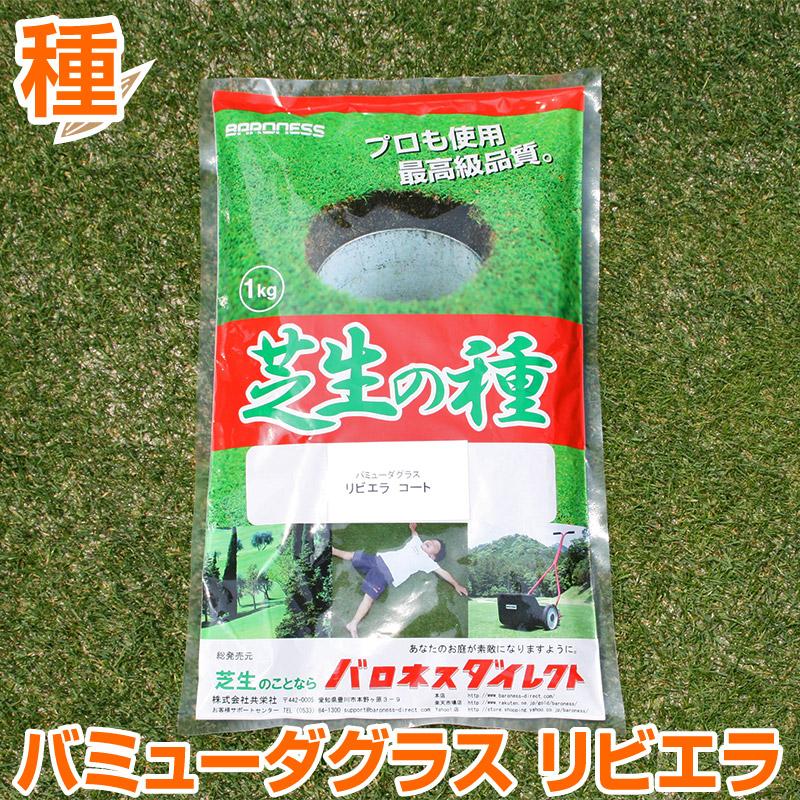 バミューダグラス リビエラ 1kg お庭の広さ12~18坪用 バロネス暖地型 芝生の種 多年草 発芽適温摂氏20度以上です。/共栄社/【店頭受取対応商品】