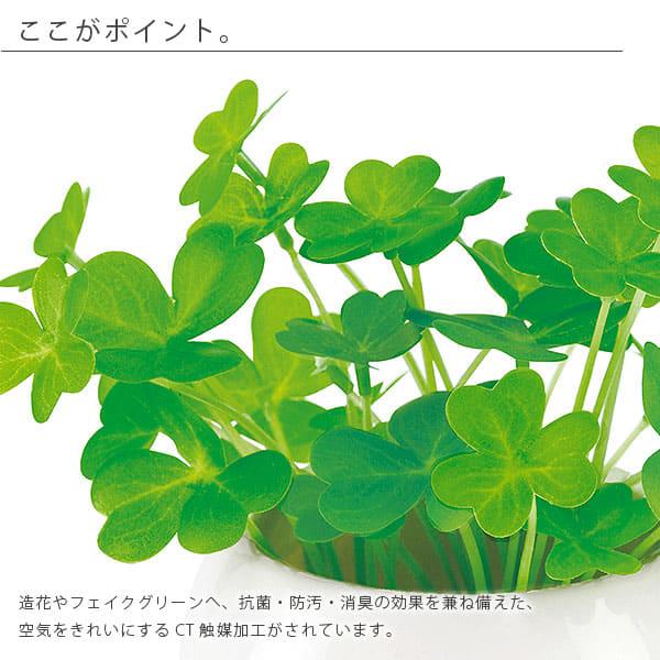 bathlier | rakuten global market: artificial plants artificial green
