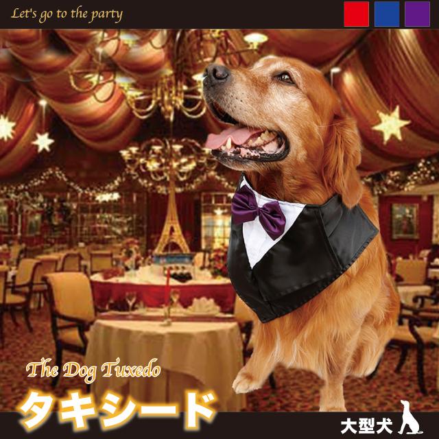 アウトレットセール 特集 クリスマス ハロウィン お誕生などのイベントに 大型犬 タキシード スカーフ コスプレ ドックウェア ドレスアップ 高品質新品