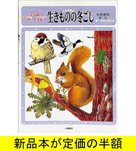 新品本のバーゲンブックです 古本 中古本ではありません 日本最大級の品揃え 公園でみつけよう生きものの冬ごし 動物 激安格安割引情報満載 バーゲンブック バーゲン本