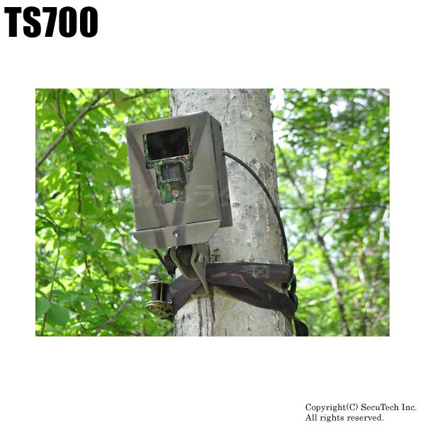 防犯カメラ・監視カメラ【TS700】不法投棄監視カメラ