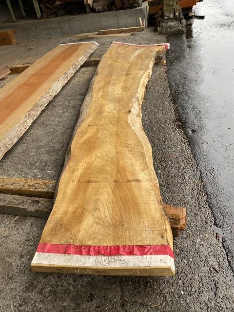 一枚板 セン 栓 無垢 天板 テーブル 幅60cm×長340cm SEN-002