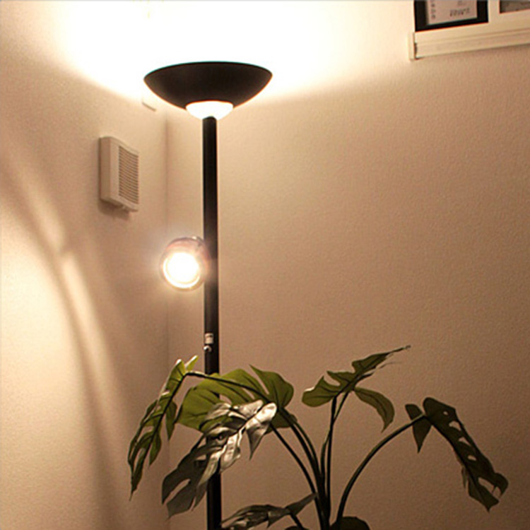 Indirect Lighting 2 Bedroom Stand Lights Ozone U Floor Light