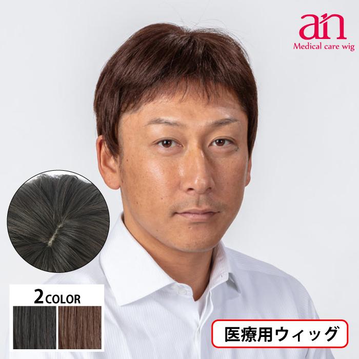 男性用 ウィッグ フルウィッグ かつら 至上 ストレート 人工皮膚 手植え 軽量 自然 通気性 wig-st-65 ショート メンズNO2 完売 an 男性