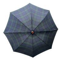 デュエットウォーカー グリーン 【晴雨兼用傘 仕込み杖 雨傘 日傘】