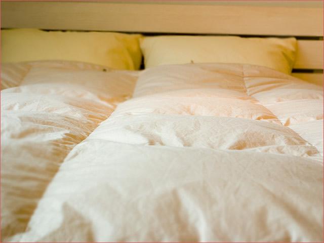 ヨーロピアン ペアタイプ羽毛布団クイーンサイズ(ダブルベッド・ワイドダブルベッド対応)