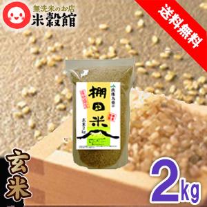玄米 2kg入りで使いやすい お米 九州産 米 <セール&特集> 2kg レターパック発送 小袋 送料込みげんまい 小分け大分玖珠 優先配送 2kgヒノヒカリ以外の品種になることがあります 送料無料 九重の棚田米