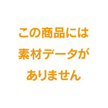 ライオン ナンバリング MC-51/206-47印字面ゴム製