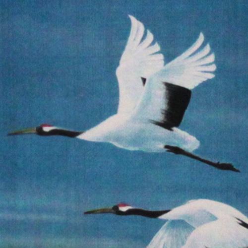 猪飼 正 額付き銅版画(メゾチント) 「舞」 1995年