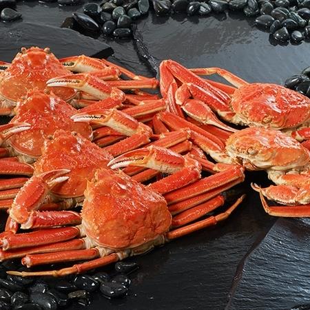 かに身もミソも丸ごと味わう! お歳暮 御歳暮 カニ かに 蟹 ギフト プレゼント 送料無料 ベルーナ ボイルズワイガニ姿たっぷり 3kg