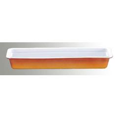 【ロイヤル(ROYALE)】 ロイヤル ガストロノームパン No625 2/4 H70mm カラ― 【キッチン用品:食器・食卓用品:食器:洋食器:皿・プレート:角皿】【ロイヤル ガストロノームパン No625 カラー】【ROYALE】