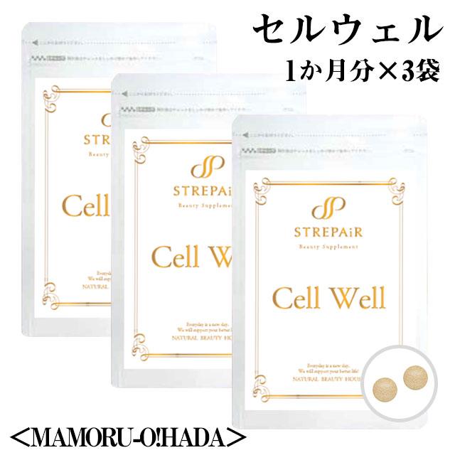 【25%OFF】 HSP補充 サプリ!Cell Well セル コエンザイム ウェル<MAMORU-O!HADA>(60粒)×3袋/ おまとめ買いがお得 HSP補充!Cell!美容 健康 サプリ HSP アスパラガス 湯治 コエンザイム 大豆, 藤枝市:fb14bfdc --- canoncity.azurewebsites.net