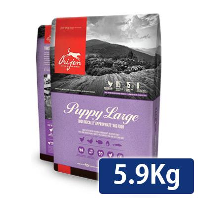 オリジン パピー ラージ 5.9kg 正規品 送料無料 コンビニ受取対応商品