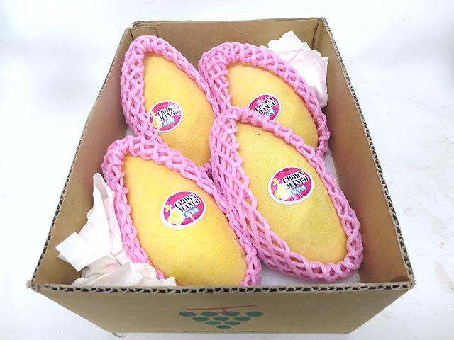 果物>マンゴー>タイ産完熟マンゴー