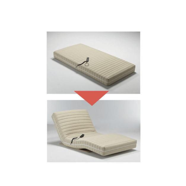 フランスベッド ルー+H89パームーブ RP-01 【送料無料】 介護 寝具 電動 起き上がり 補助 介助 高齢者 寝たきり ベッド サポート 寝たきり 【メーカー直送】