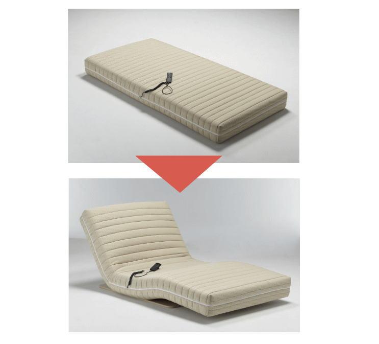 フランスベッド ルー+H89パームーブ RP-01 【送料無料】 介護 寝具 電動 起き上がり 補助 介助 高齢者 寝たきり ベッド サポート 寝たきり
