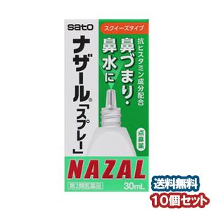 【第2類医薬品】 ナザール スプレー 30ml ×10 あす楽対応