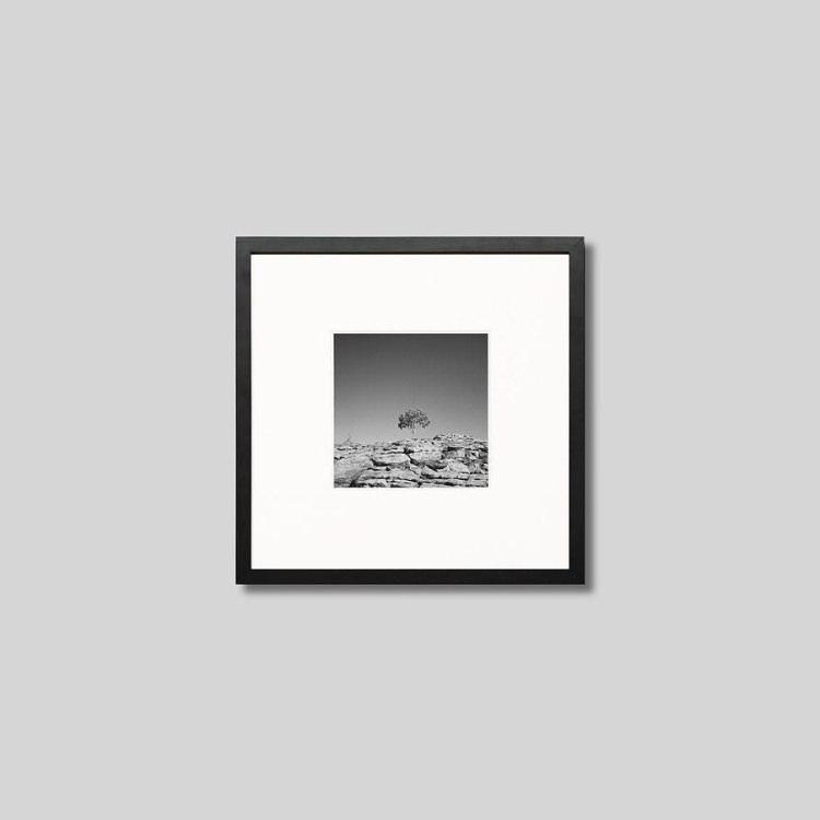 ウッド黒フレーム 正方形Sサイズ インテリア アート フォト プロ作品 デザイナー デザイン 激安挑戦中 フォトグラフ 豊かなおうち時間 男前インテリア IGREBOW 超定番 岩山に1本の木 ピクチャーアート 写真 オーストラリア スタイリッシュ アイグレボウ モノクローム モダン モノクロ インテリアフォト キングスキャニオン