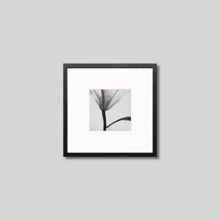 ウッド黒フレーム 正方形Sサイズ インテリア アート 割引も実施中 フォト プロ作品 デザイナー デザイン フォトグラフ 豊かなおうち時間 男前インテリア モノクロ アイグレボウ スタイリッシュ 『4年保証』 ユリの花 写真 ピクチャーアート IGREBOW モダン モノクローム インテリアフォト