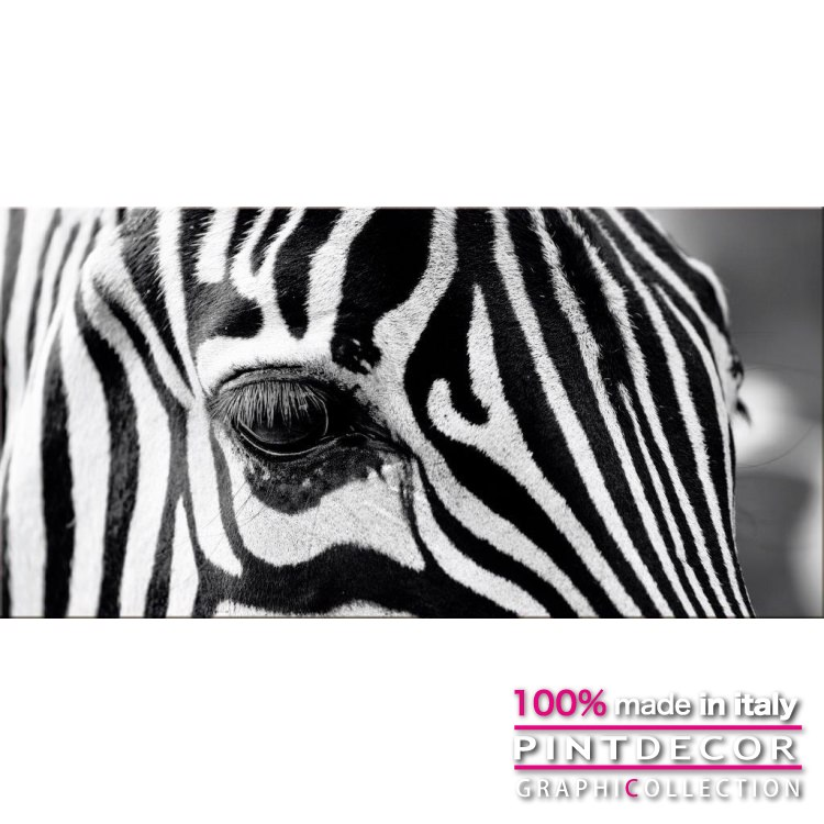 デコレーションパネル PINTDECOR グラフィコレクション OCCHIO ZEBRATO G5950|ピントデコール イタリア アートパネル ウォールデコ ペインティング 絵画 リビング インテリア デザイン モダン ホテルライク 新居 イタリア直輸入