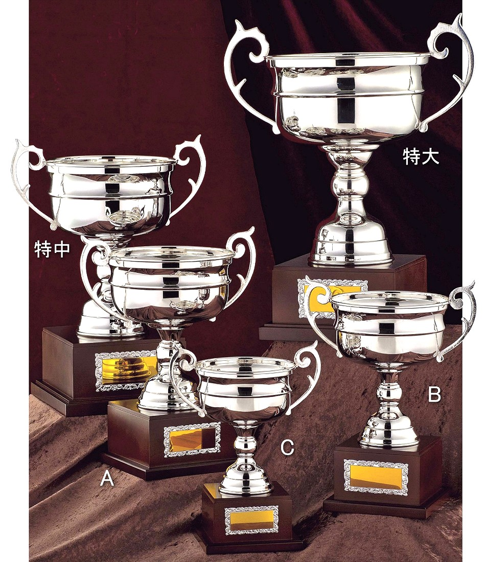 優勝カップ【送料無料&文字無料】シルバー優勝カップ NS305-Aサイズ●高さ355mm