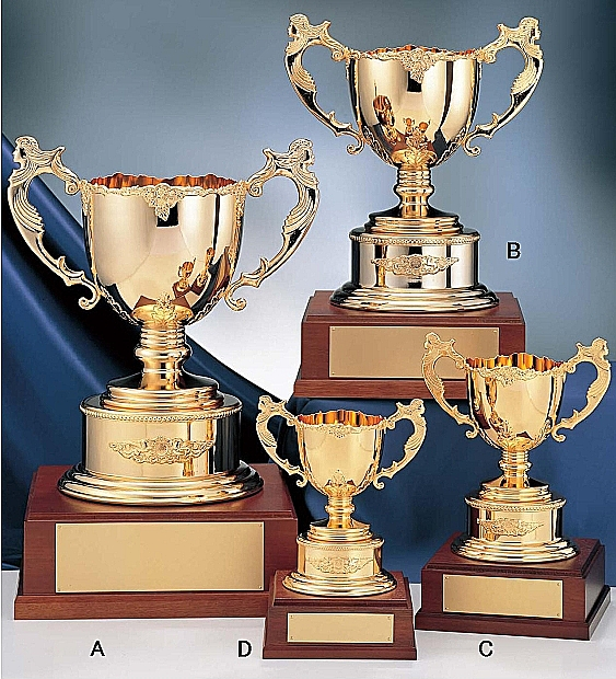 優勝カップ【送料無料&文字彫刻無料】ゴールド優勝カップ F-GC1087-C●高さ310mm