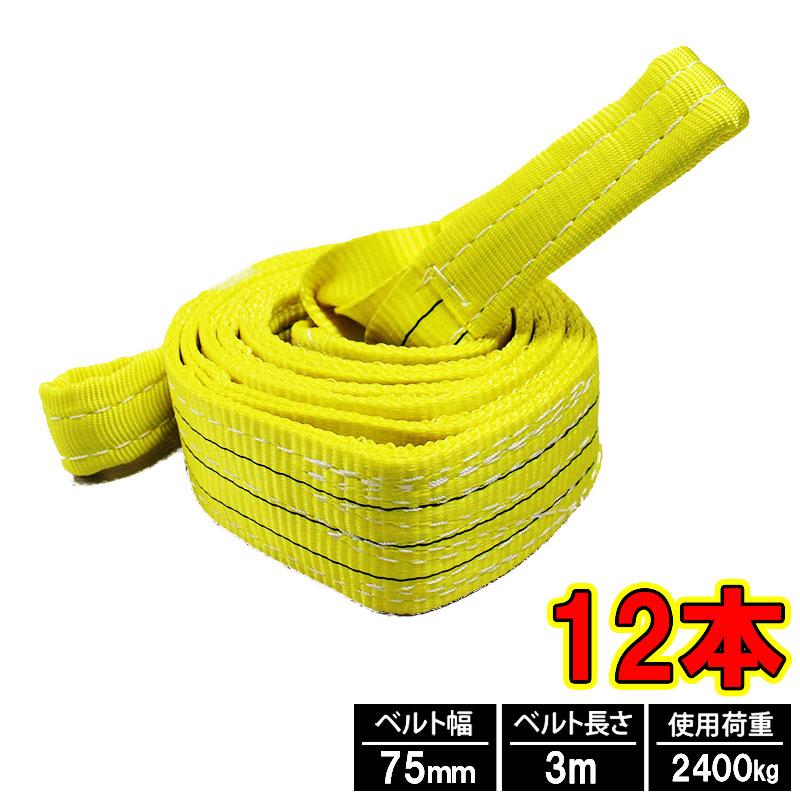 日本国内第三者公的機関試験済 ナイロンスリングベルト 日本正規品 スリングベルト 3m 販売 75mm 12本 使用荷重2400kg 道具 ベルトスリング 繊維ベルト 工具