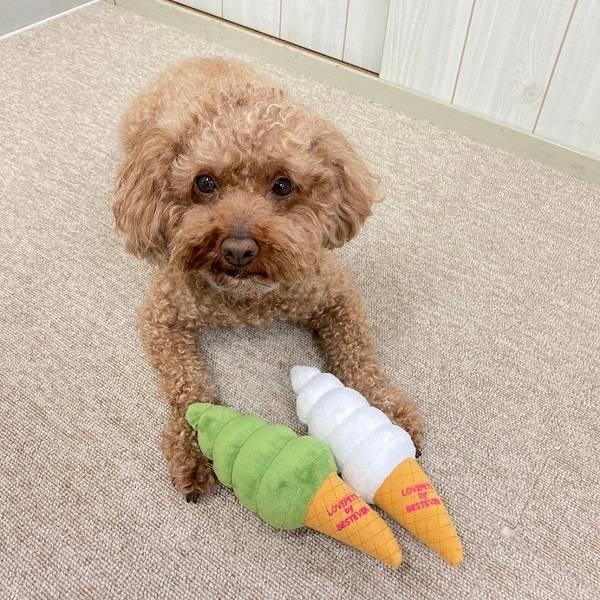 犬用犬のおもちゃ|ソフトクリームのぬいぐるみ【ベストエバー犬のおもちゃLovePetsbyBESTEVER音が鳴るかわいいおもしろペット用】【ラッピング無料対応可】