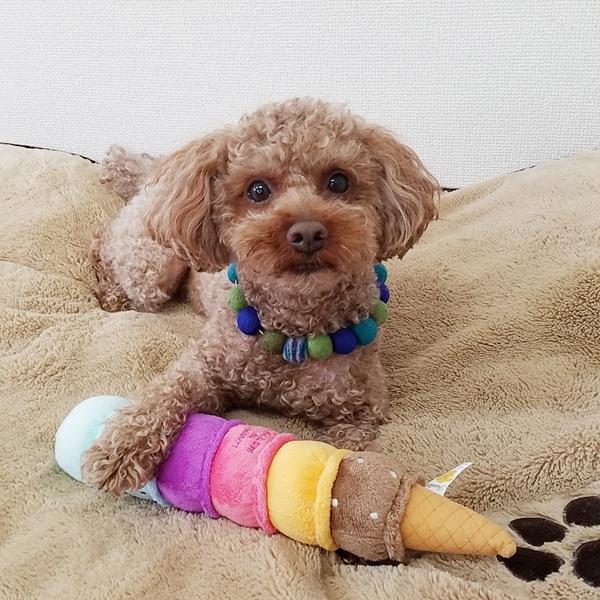 Love Pets Giant Ice Cream Sorbet Mix / Dog Toy / Plush
