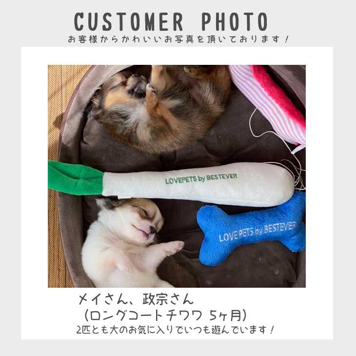 犬用犬のおもちゃ|ナガネギのぬいぐるみ【ベストエバー犬のおもちゃLovePetsbyBESTEVERかわいいおもしろペット用】【ラッピング無料対応可】