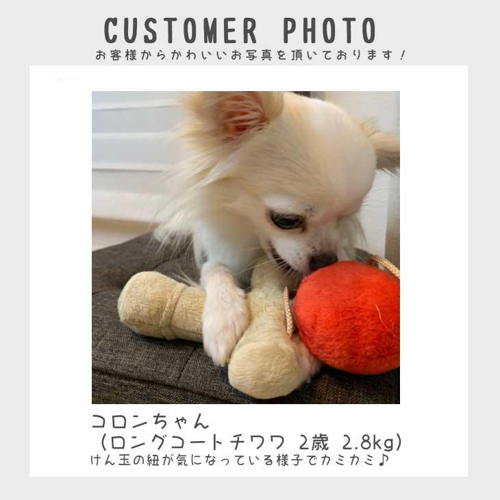 犬用犬のおもちゃ|けん玉のぬいぐるみ【ベストエバー犬のおもちゃLovePetsbyBESTEVER音が鳴るかわいいおもしろペット用】【ラッピング無料対応可】