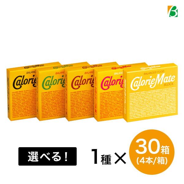大塚製薬 カロリーメイト ブロック 30箱セット(1箱4本入) 送料無料 キャッシュレス ポイント還元
