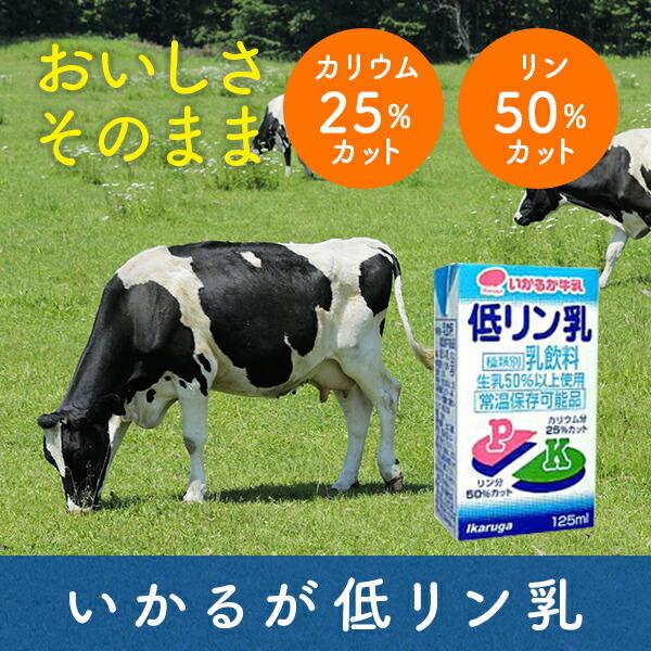 【マラソン期間中2倍】いかるが牛乳 低リン乳 125ml×24本入り