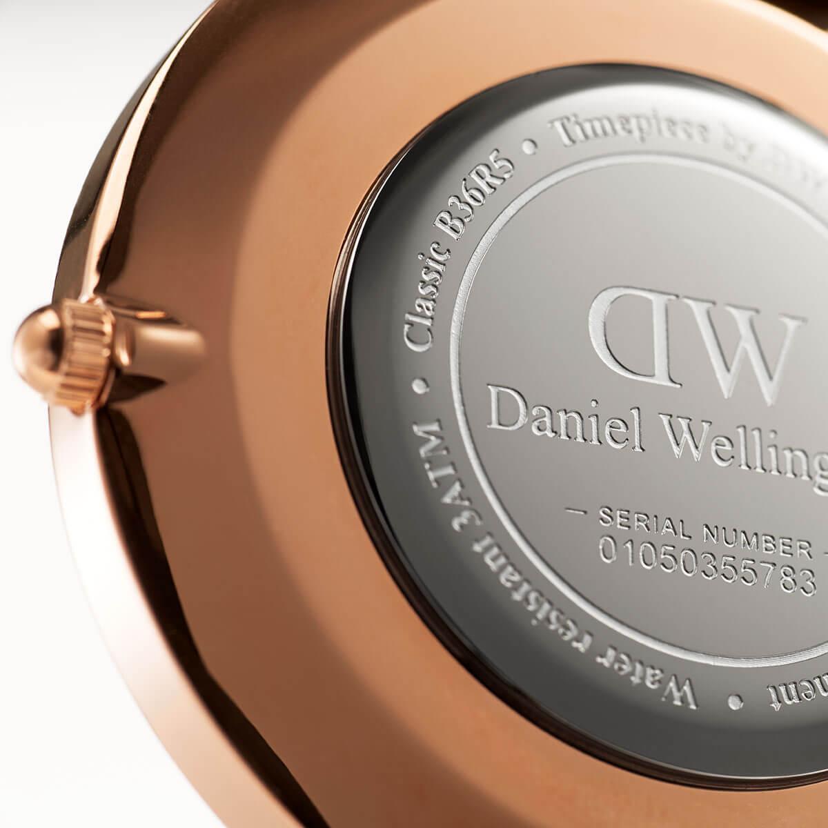 ダニエルウェリントン 36mm Daniel Wellington ウィンチェスター ローズ メンズ レディース 腕時計