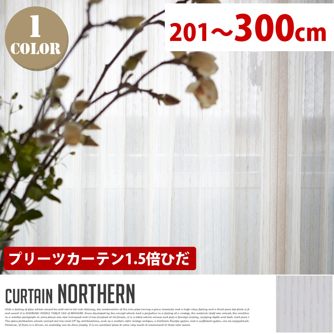 Northern(ノーザン) プリーツカーテン【1.5倍ひだ】 (幅:201-300cm)送料無料