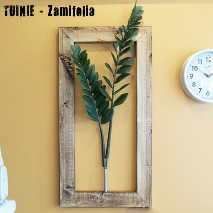 プラントフレームTUINIE ITN52437 Zamifolia(ザミフォリア) JIG(ジェイアイジー)