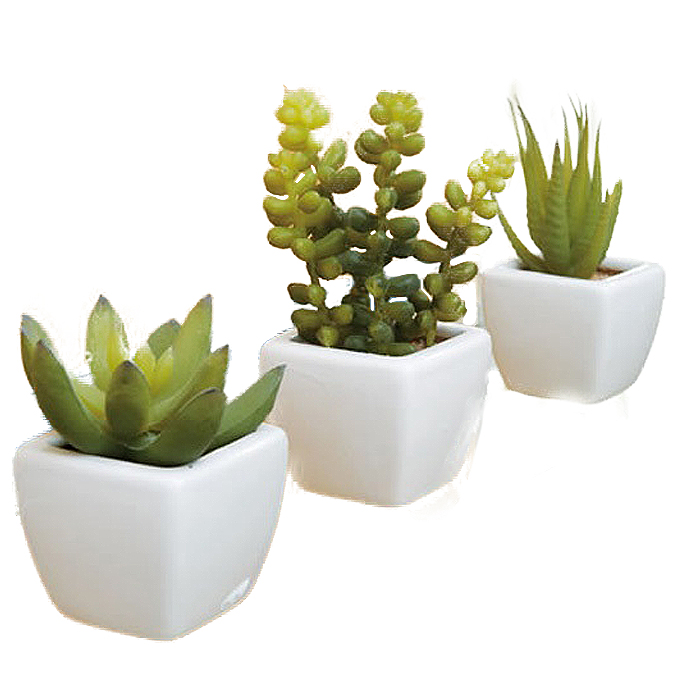 2020新作 空間を選ばず飾れるサイズが魅力 アクセント植物3点セット 多肉植物 高級品 日本製 イミテーショングリーン 光触媒