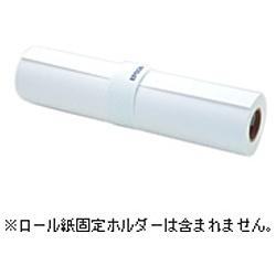 【送料無料】 エプソン EPSON プロフェッショナルフォトペーパー 薄手半光沢 (約728mm×30.5m・1ロール) PXMCB1R13