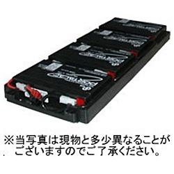 【送料無料】 シュナイダーエレクトリック Schneider Electric SUA750RMJ1UB 交換用バッテリキット RBC34L