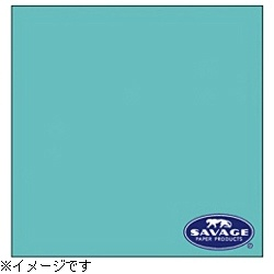 【送料無料】 サベージ 【サベージ背景紙】バックグラウンドペーパー(No.47 ベビーブルー) 2×11m[RL47122C] 【メーカー直送・代金引換不可・時間指定・返品不可】