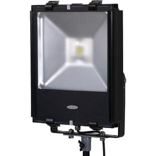【送料無料】 日動工業 LEDエコナイター70 LEN70DESW