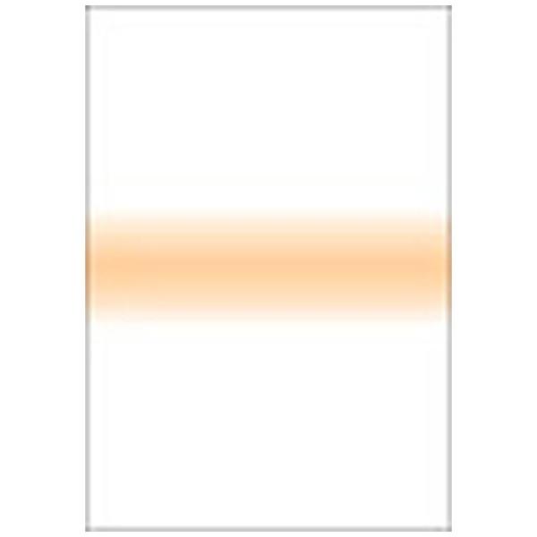 【送料無料】 LEE LEEリーフォトグラフィック樹脂フィルター 100X150mm角 ストライプペールコーラルストライプ