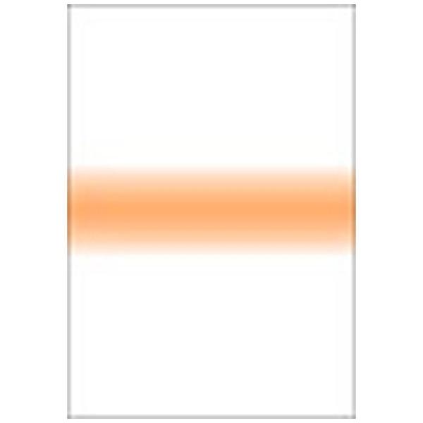 【送料無料】 LEE LEEリーフォトグラフィック樹脂フィルター 100X150mm角 ストライプコーラルストライプ