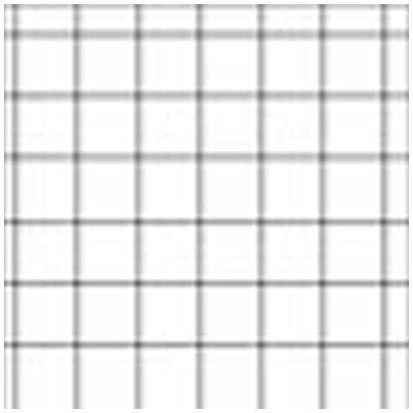 【送料無料】 LEE LEEリーフォトグラフィック樹脂フィルター 100X100mm角 全面クロススター4ポイント