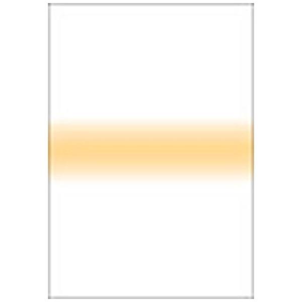 【送料無料】 LEE LEEリーフォトグラフィック樹脂フィルター 100X150mm角 ストライプストローストライプ