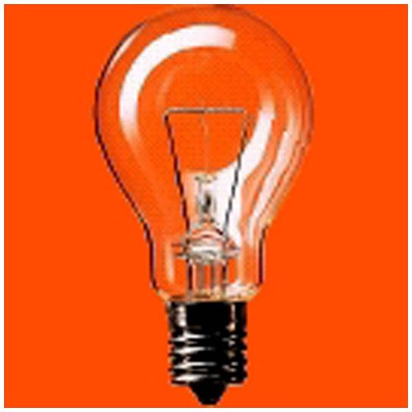 【送料無料】 パナソニック Panasonic ミニクリプトン電球(簡易包装) LDS110V90WCK25K[LDS110V90WCK25K]